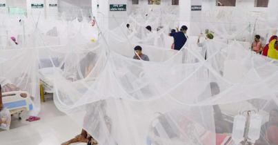 ডেঙ্গু আক্রান্ত হয়ে আরও ২৪২ জন হাসপাতালে, মৃত্যু ২