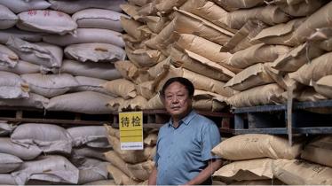 চীনে এক শুকর চাষীর ১৮ বছরের কারাদণ্ড
